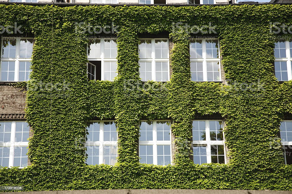 Building with ivy royalty-free stock photo