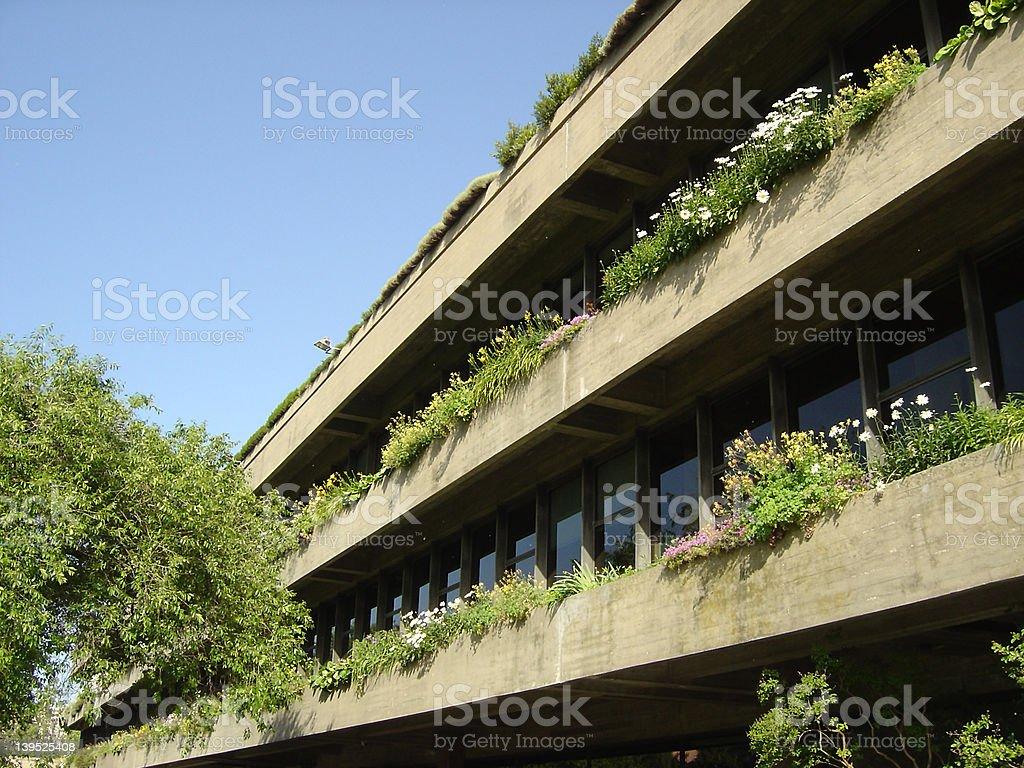 building12 stock photo