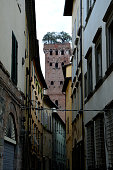 Buildings and  Guinigi tower in Lucca city in Italy.