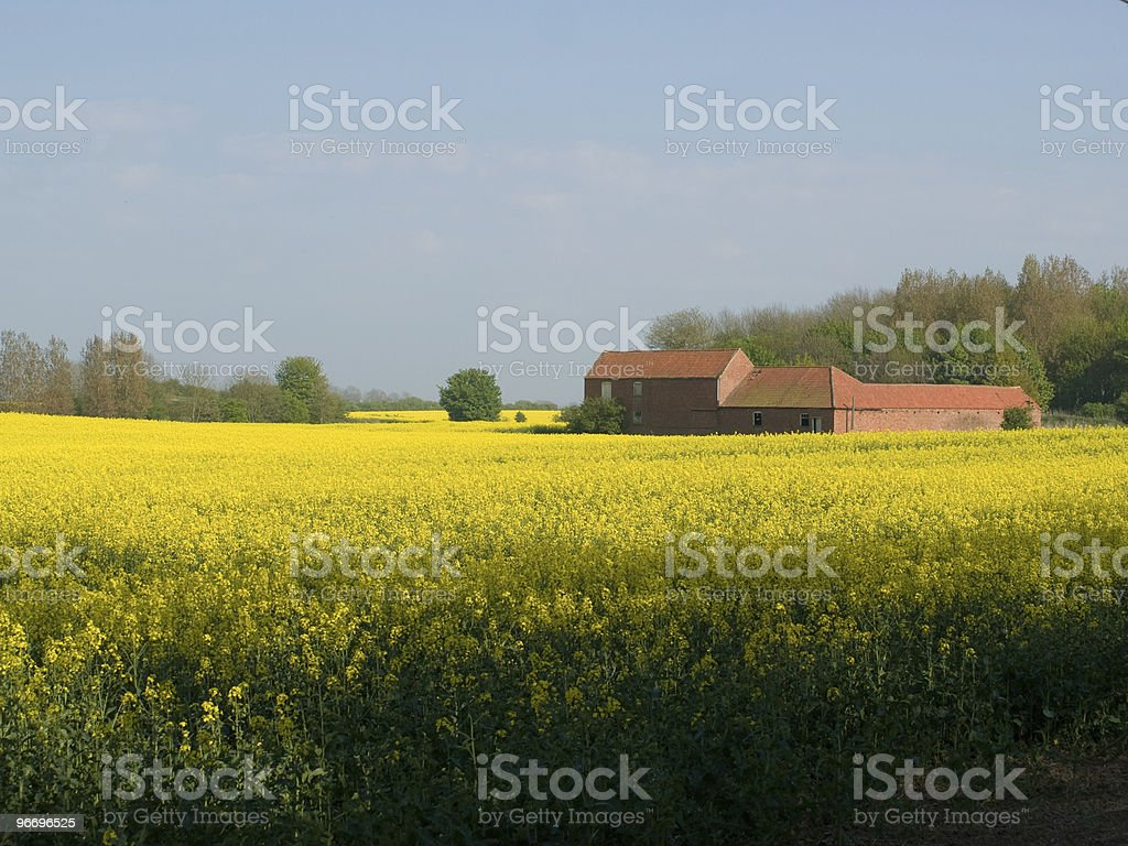 Builing in field stock photo