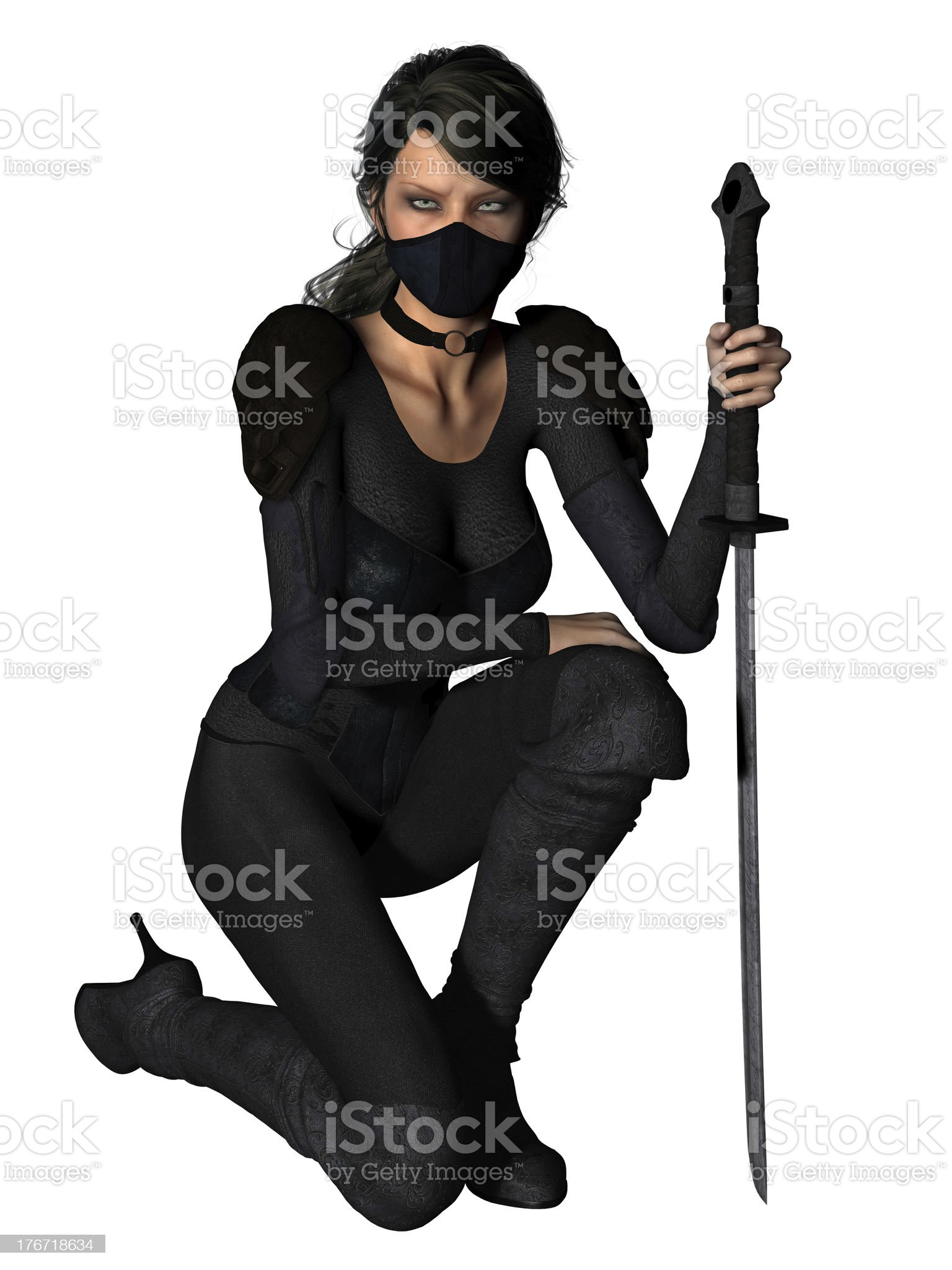 bujinkan royalty-free stock photo
