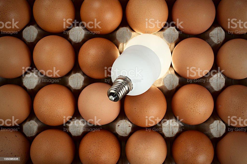 Bulb among eggs stock photo