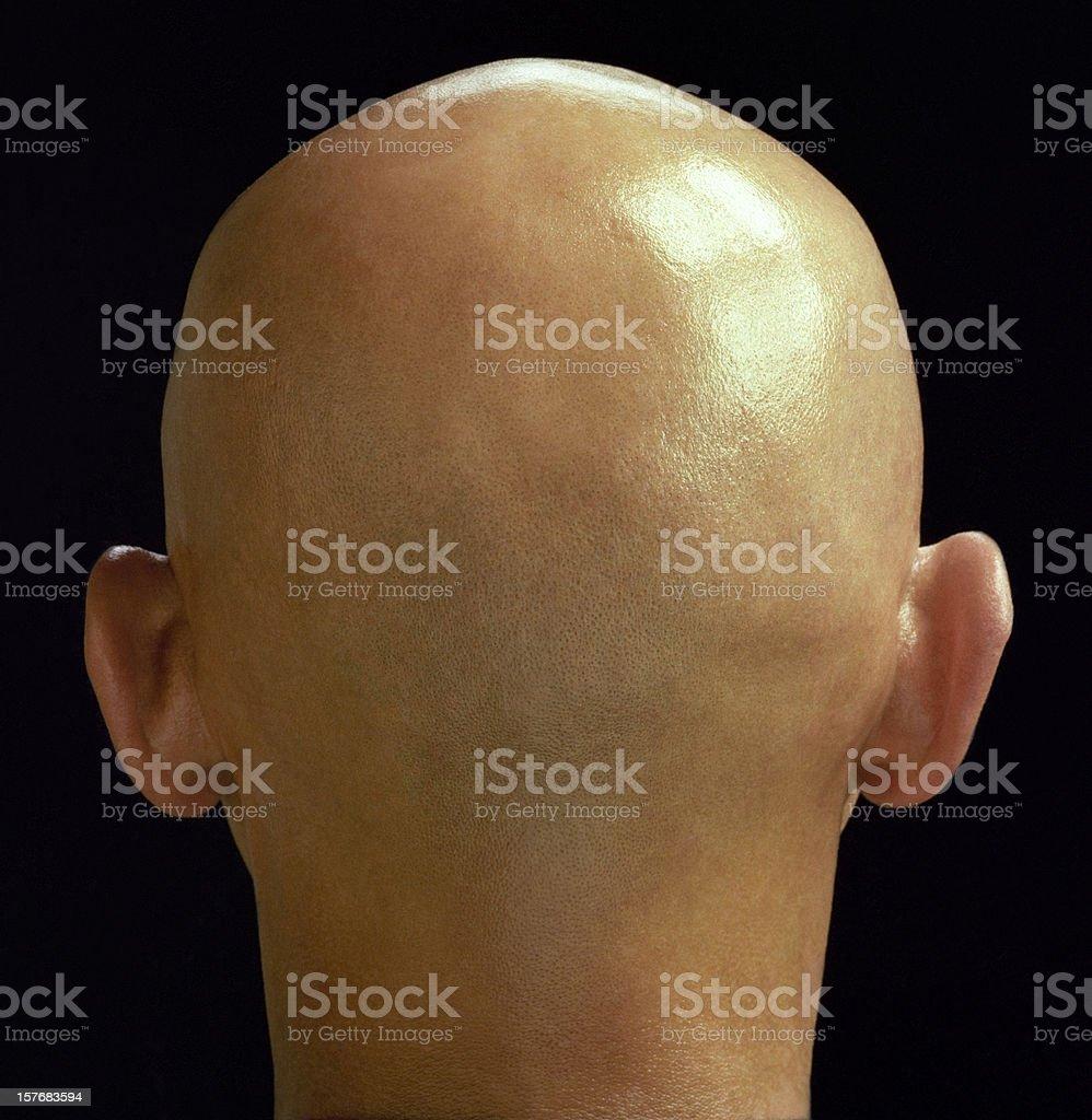 bulb head stock photo