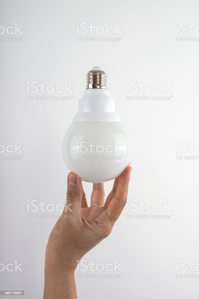 Bulb in Hand royalty-free stock photo
