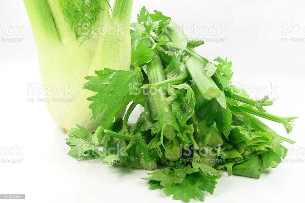 Bulb of Anise and celery stem, leaves. royalty-free stock photo