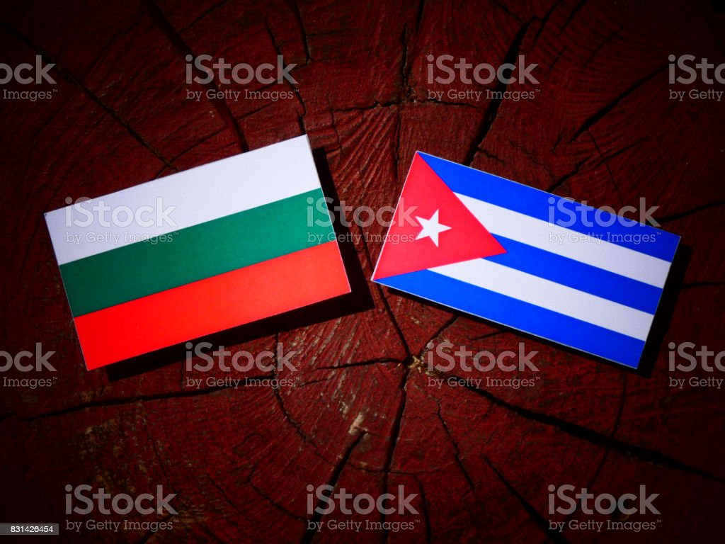 Bulgarian flag with Cuban flag on a tree stump isolated stock photo