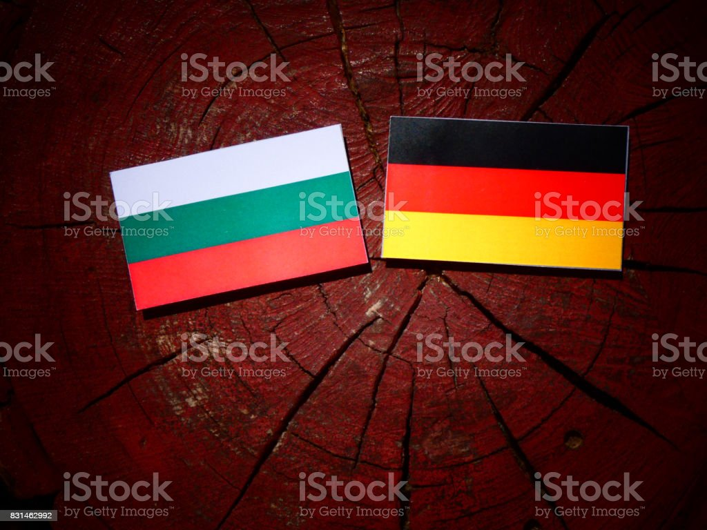 Bulgarian flag with German flag on a tree stump isolated stock photo