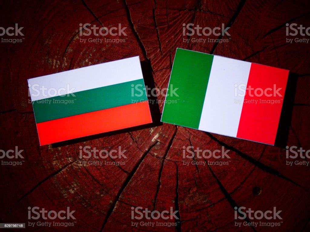 Bulgarian flag with Italian flag on a tree stump isolated stock photo