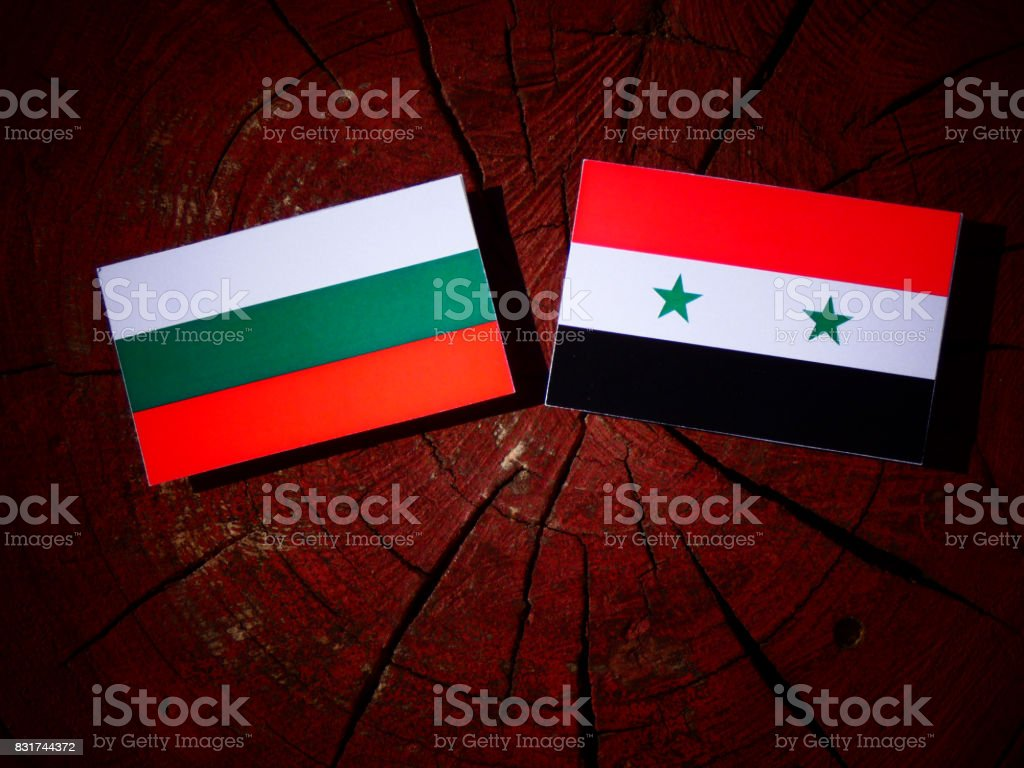 Bulgarian flag with Syrian flag on a tree stump isolated stock photo