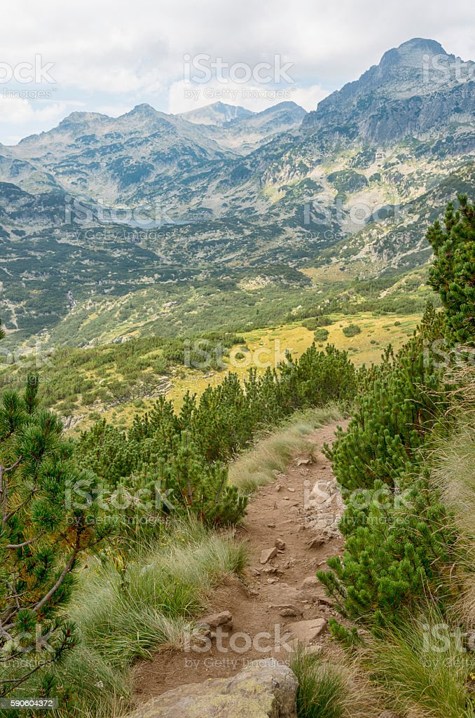 Bulgarian mountain Pirin royalty-free stock photo