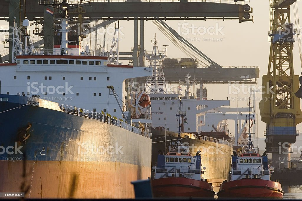 Bulk carriers in sunlight royalty-free stock photo
