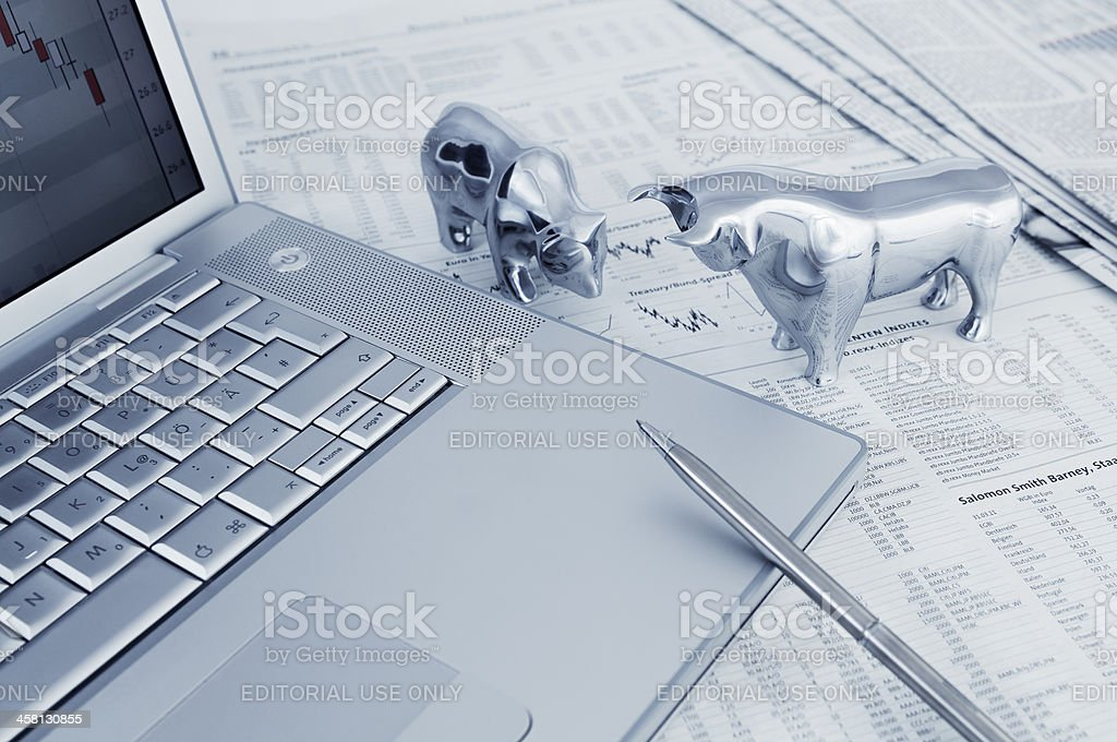 Bull and bear with laptop stock photo