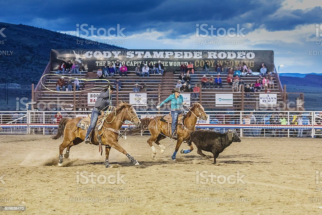 Bull chasing cowboys on horses at rodeo arena Cody Wyoming stock photo