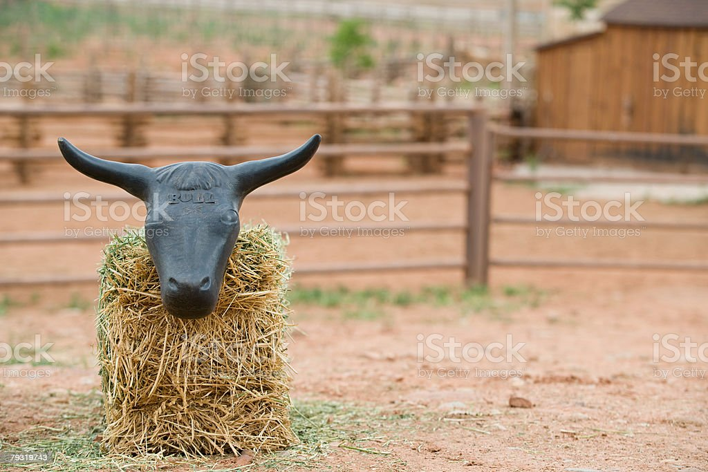Bull head on hay bale royalty-free stock photo