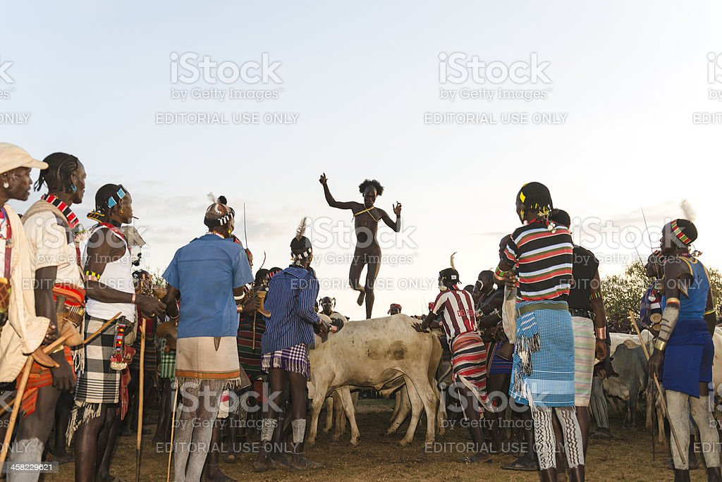 Bull jumping ceremony royalty-free stock photo