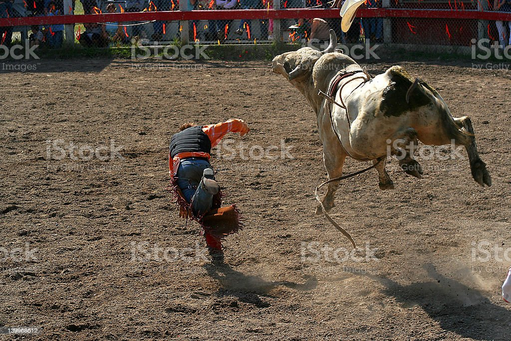 Bull rider royalty-free stock photo