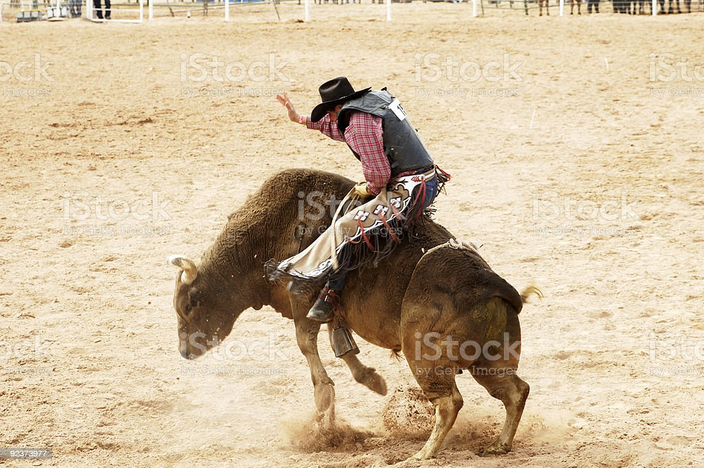 Bull Riding 1 stock photo