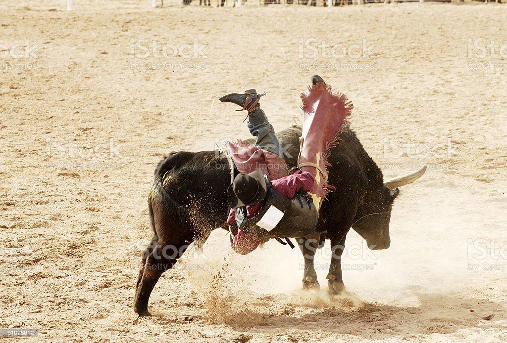 bull riding 4 royalty-free stock photo