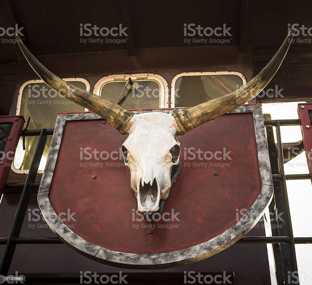 Bull skull with long horns royalty-free stock photo