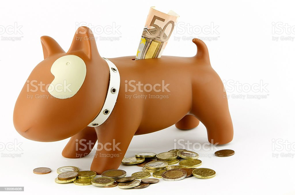 Bull terrier home bank royalty-free stock photo