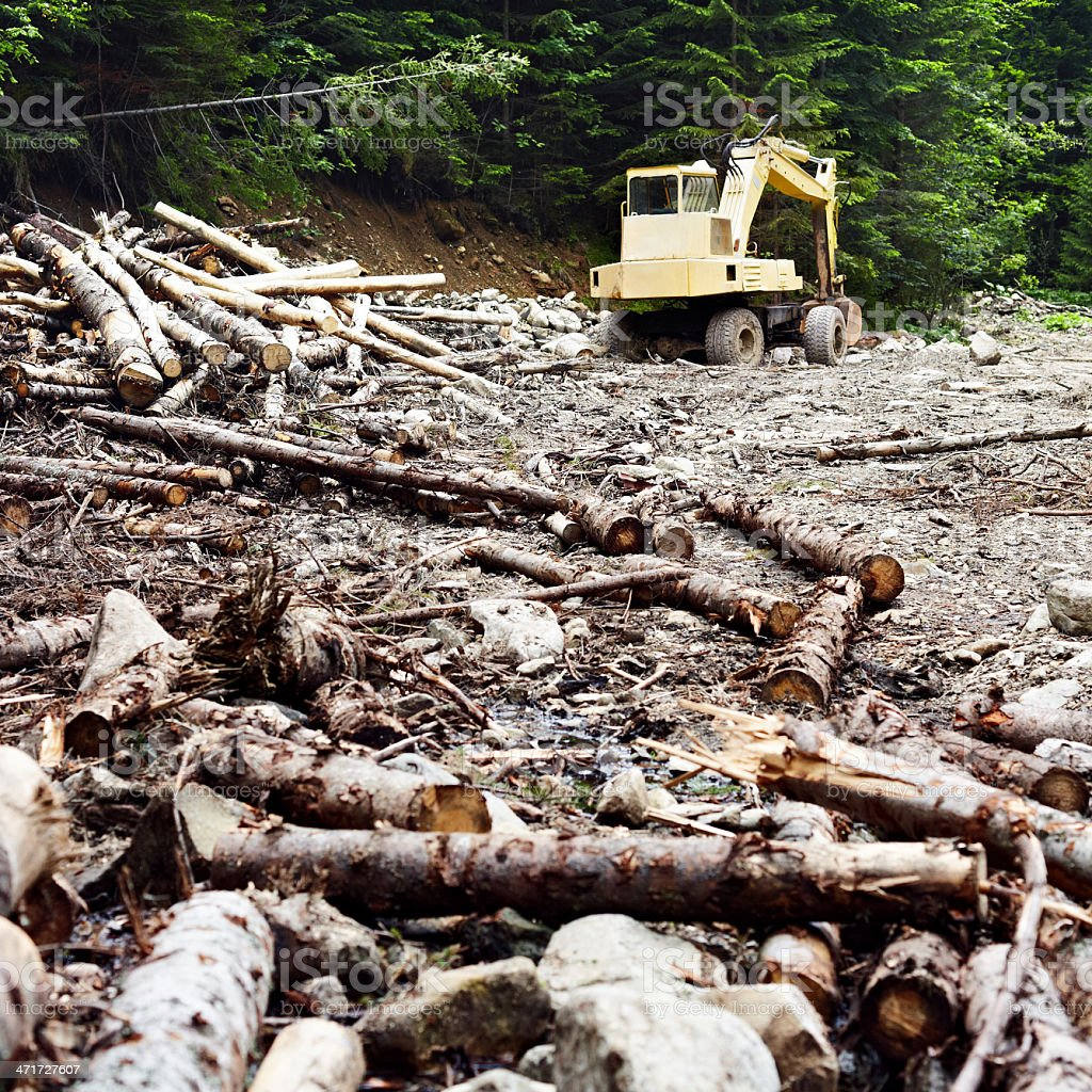 Bulldozer in the forest royalty-free stock photo