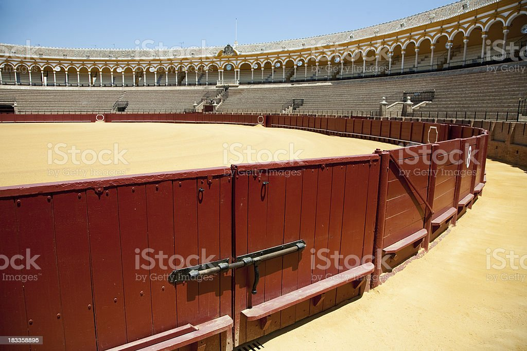 Bullfight stock photo