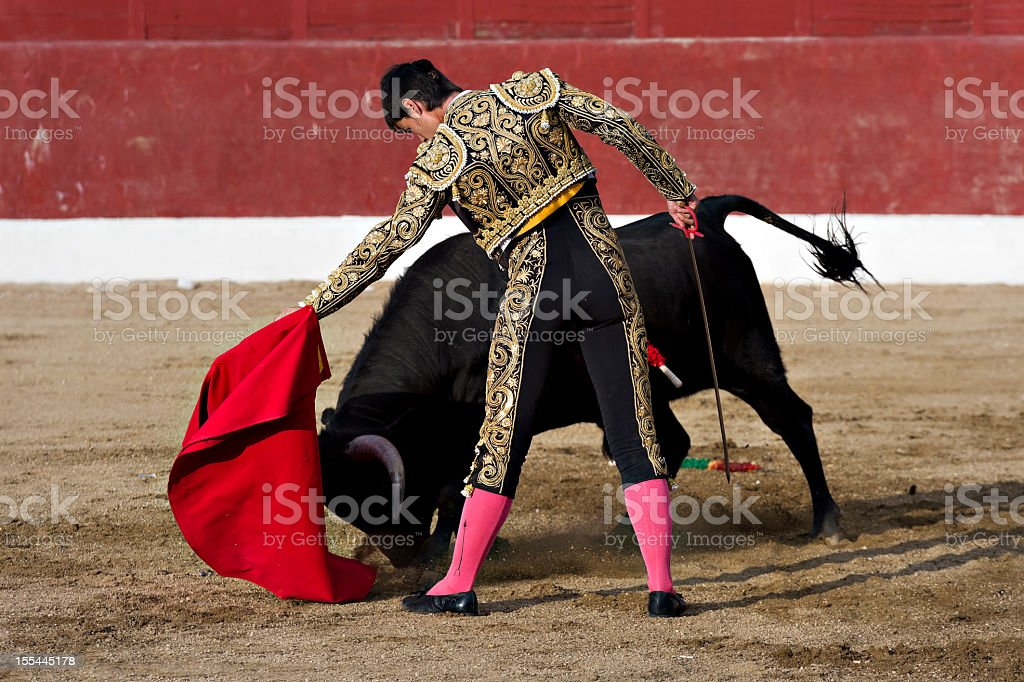 A bullfighter standing beside a black bull stock photo