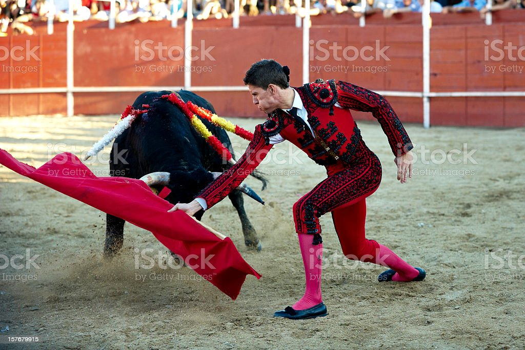 Bullfighter waving the red flag in front of the bull stock photo