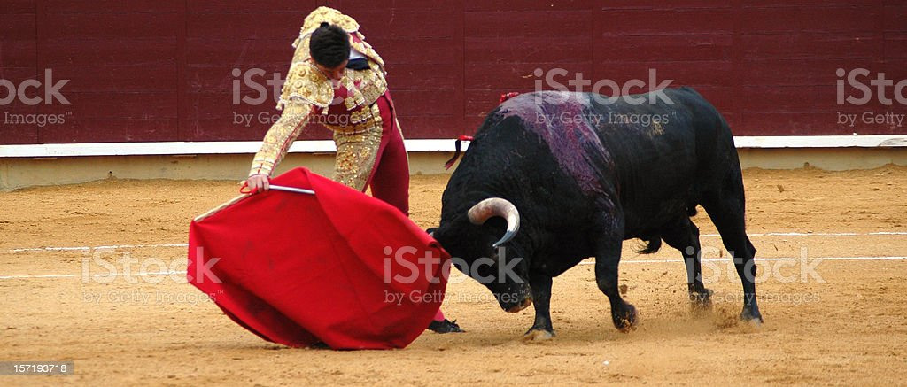 Bullfighter's pass stock photo