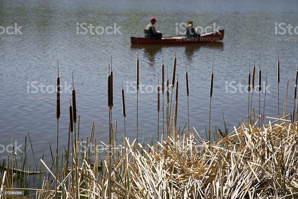 Bullrush Canoe royalty-free stock photo