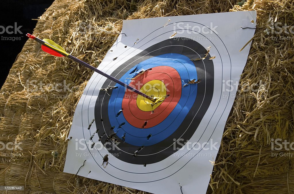 Bullseye! royalty-free stock photo