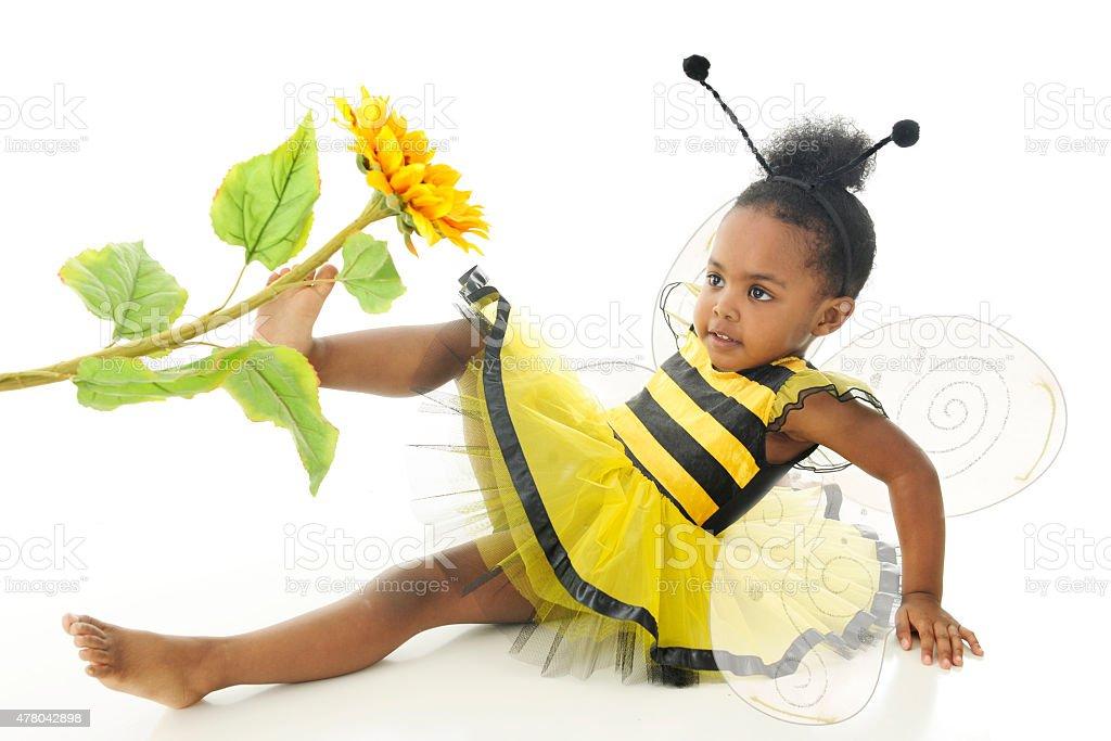 Bumble Bee Down stock photo