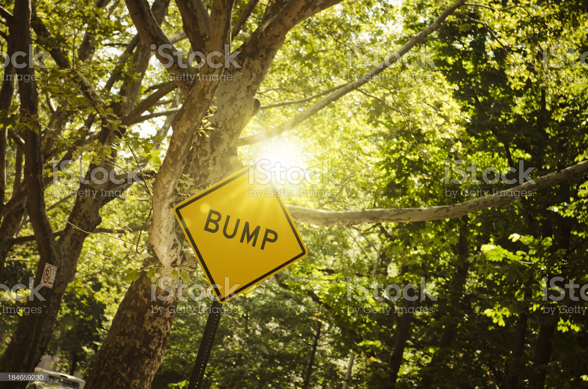 Bump street sign in USA royalty-free stock photo