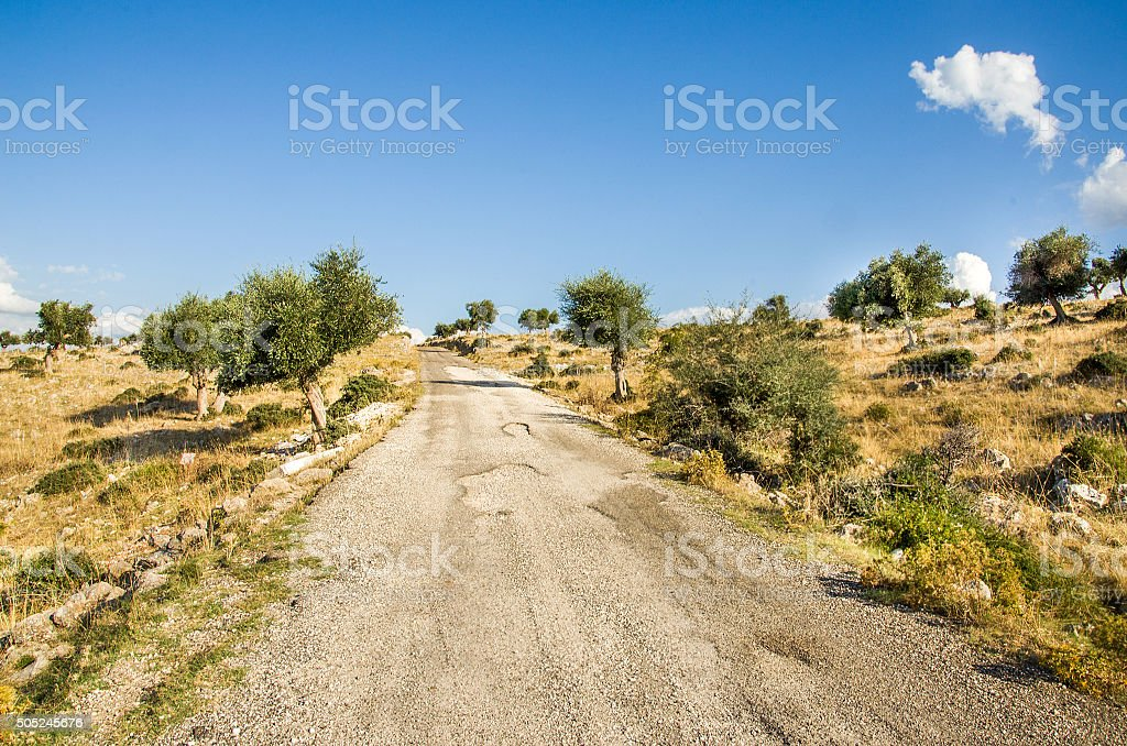 bumpy road in Puglia countryside -  Gargano stock photo
