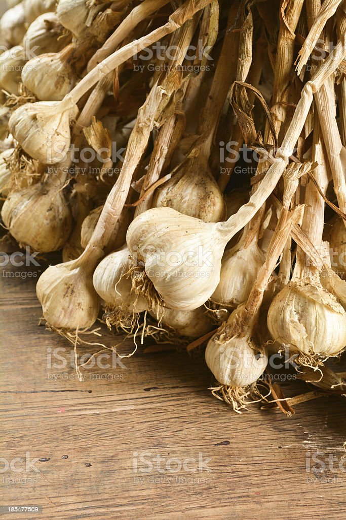 Bunch garlic royalty-free stock photo