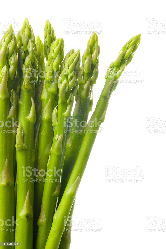 A bunch of asparagus on a white background stock photo