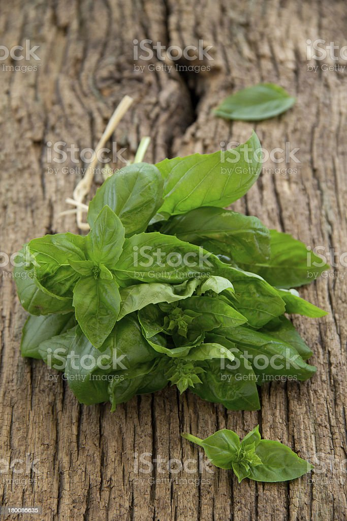 Bunch of basil on the old board. Selective focus. royalty-free stock photo