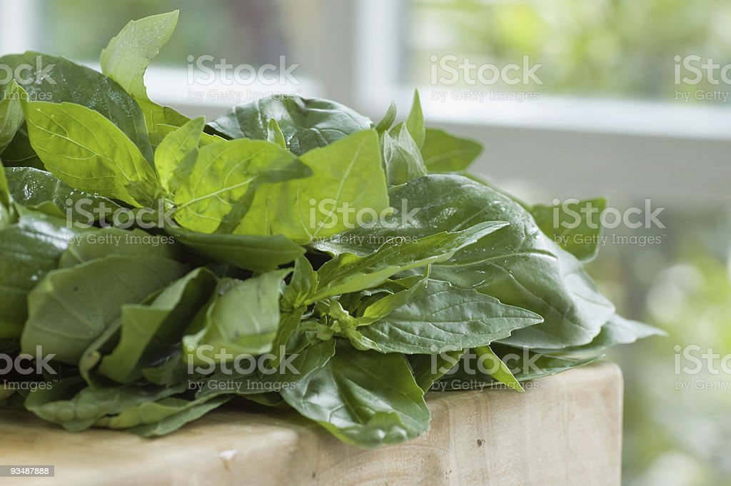 Bunch of basil on wooden chopping board royalty-free stock photo