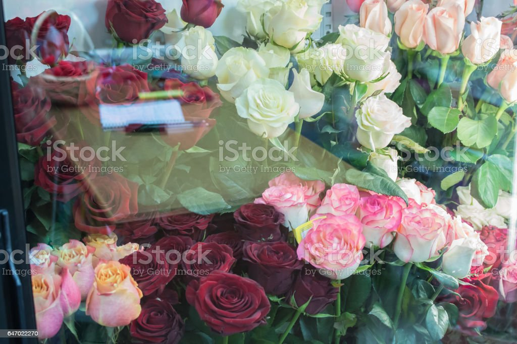 Bunch of big pink red white tea roses stock photo