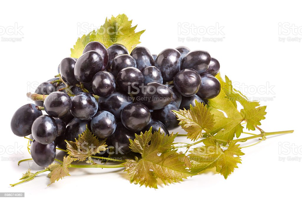 bunch of blue grapes with leaf isolated on white background stock photo