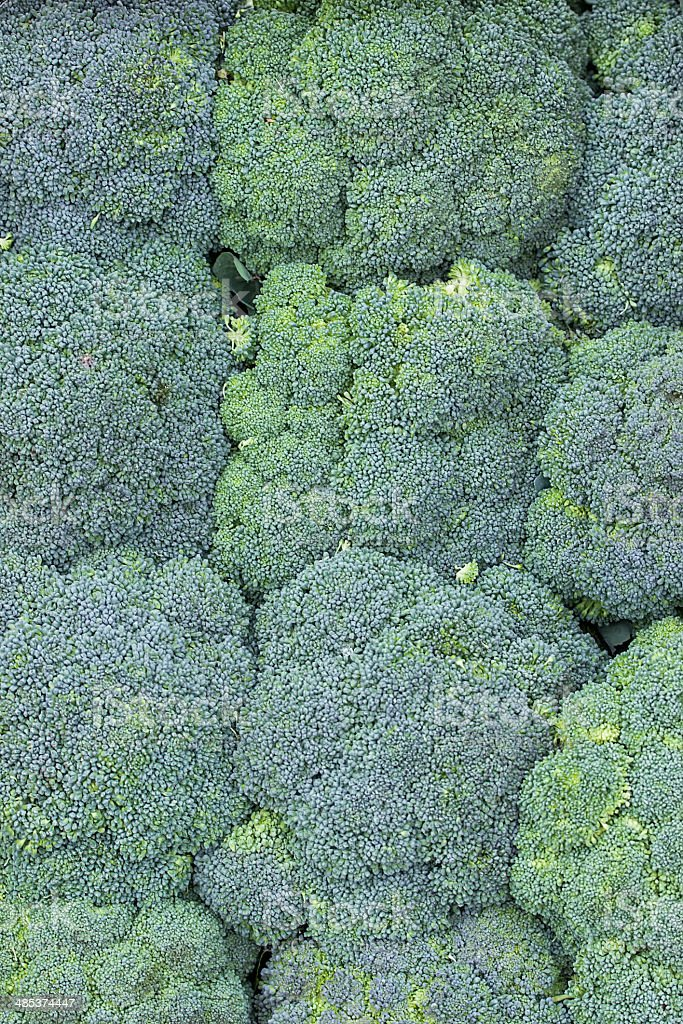 bunch of broccoli background stock photo