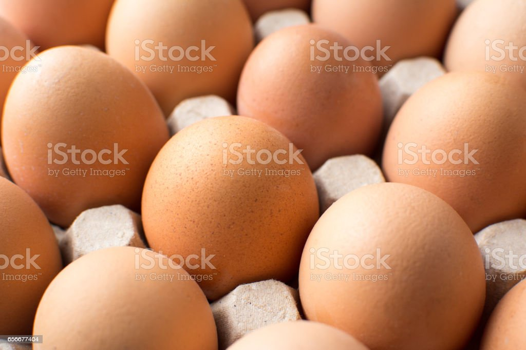 Bunch of chicken eggs in cardboard box stock photo