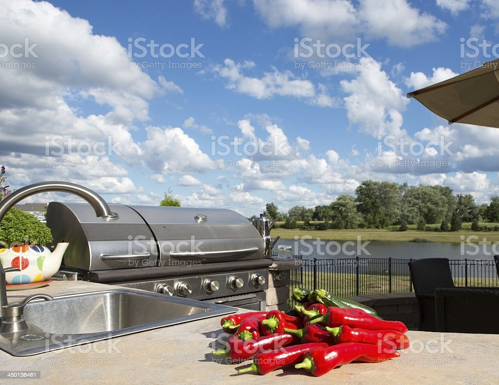 Bunch of Chili royalty-free stock photo