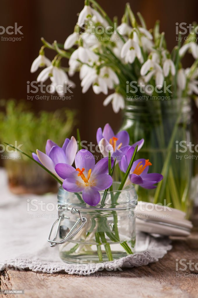 Bunch of crocus and snowdrops in a vase. stock photo
