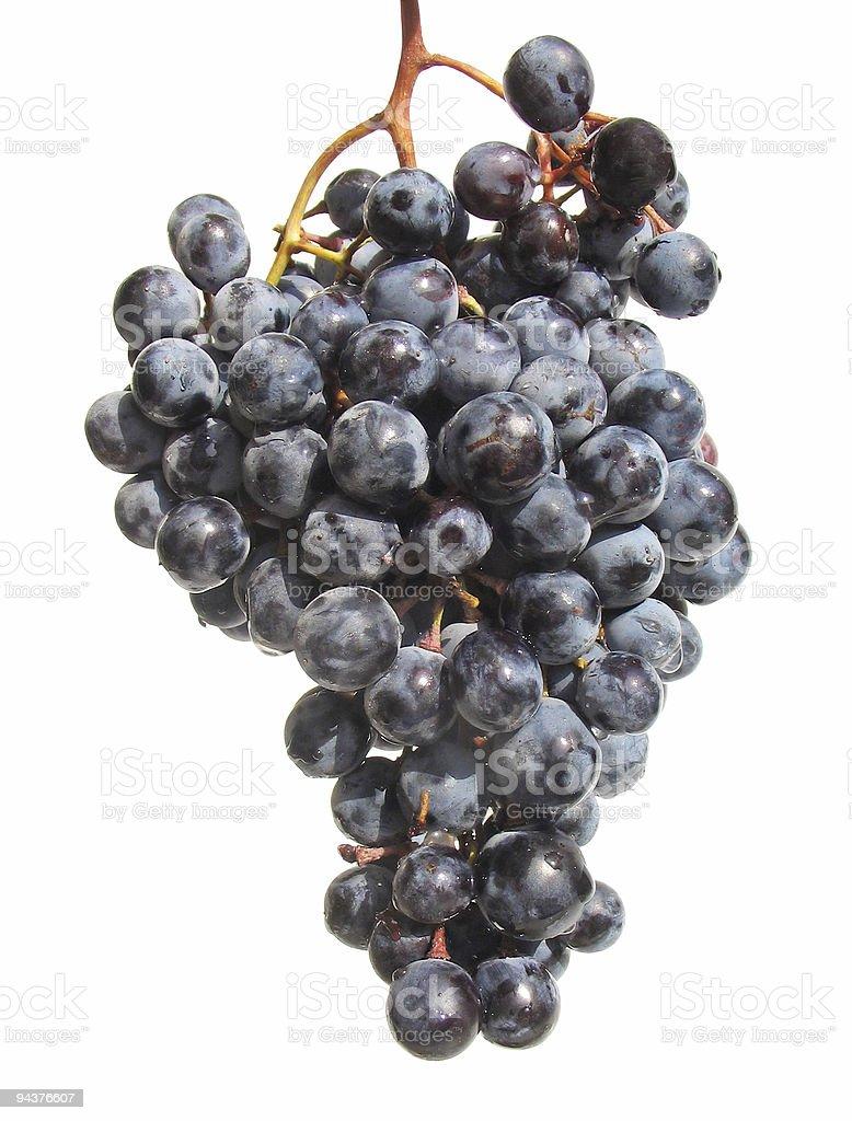 Bunch of dark grapes stock photo