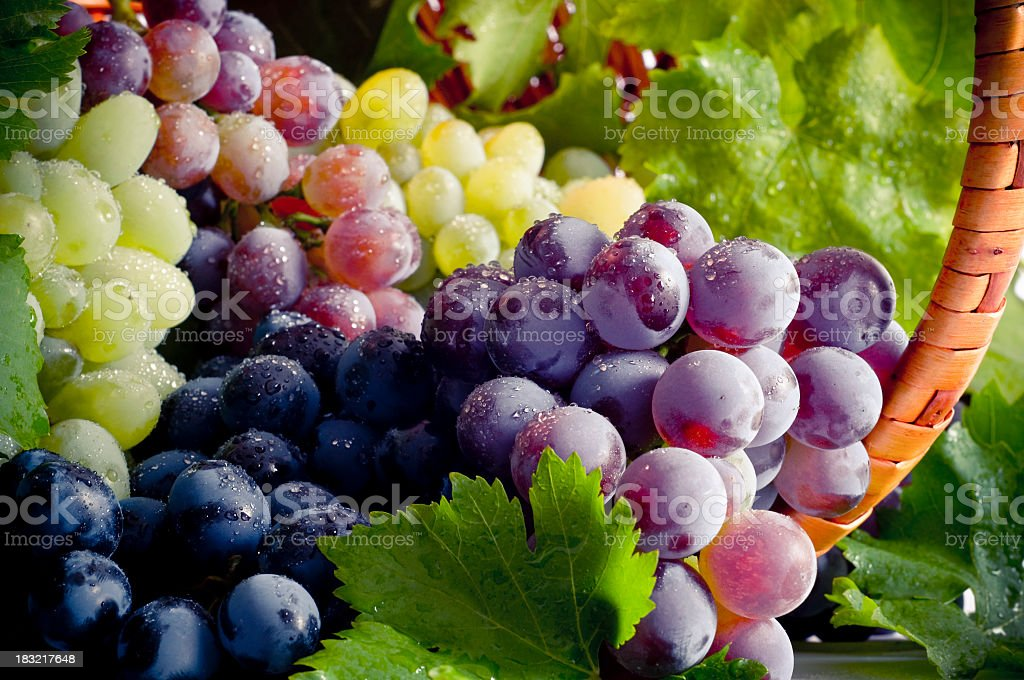Bunch of different types of fresh grapes stock photo