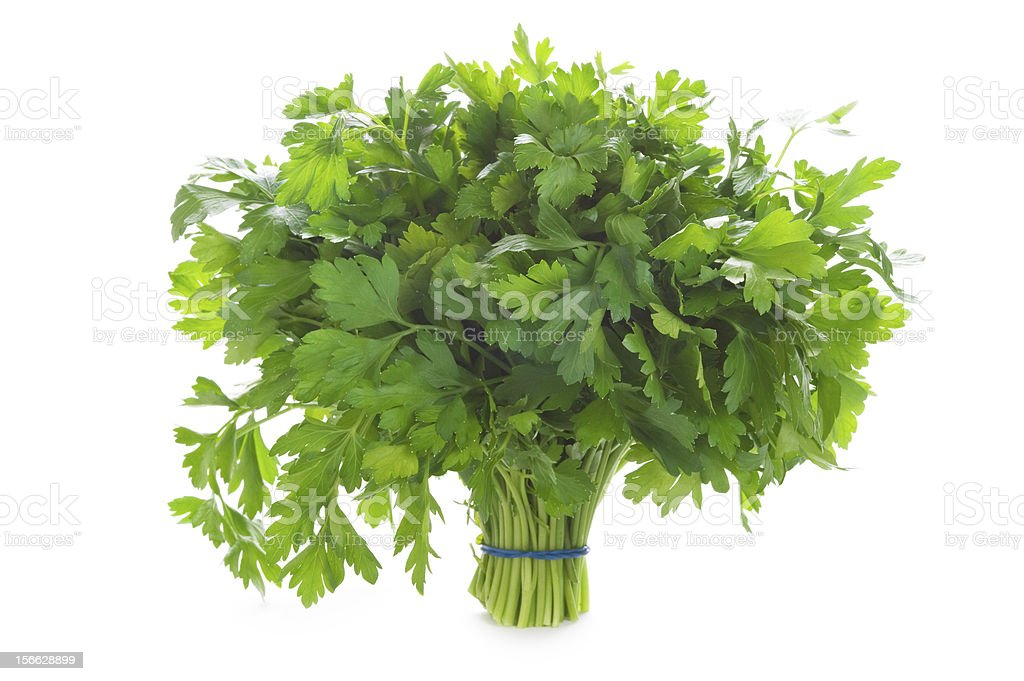bunch of flat leaved parsley isolated on a white background royalty-free stock photo
