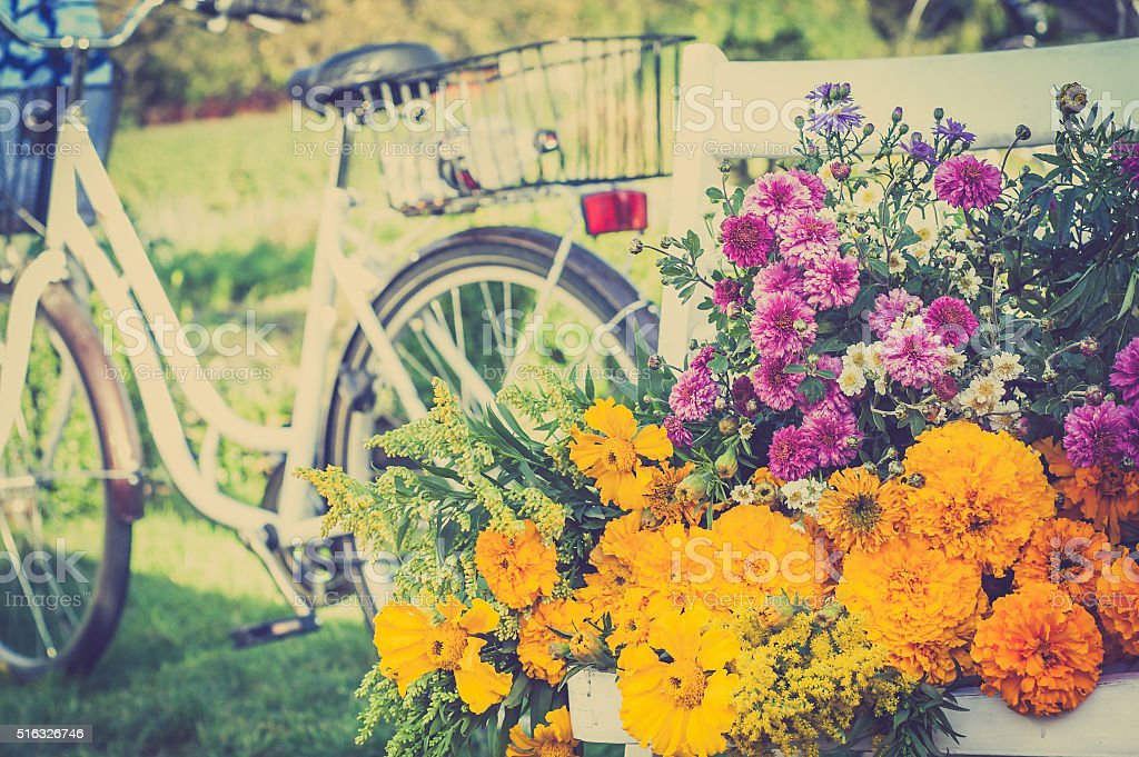 Bunch of flowers and blurred retro bike in the background stock photo