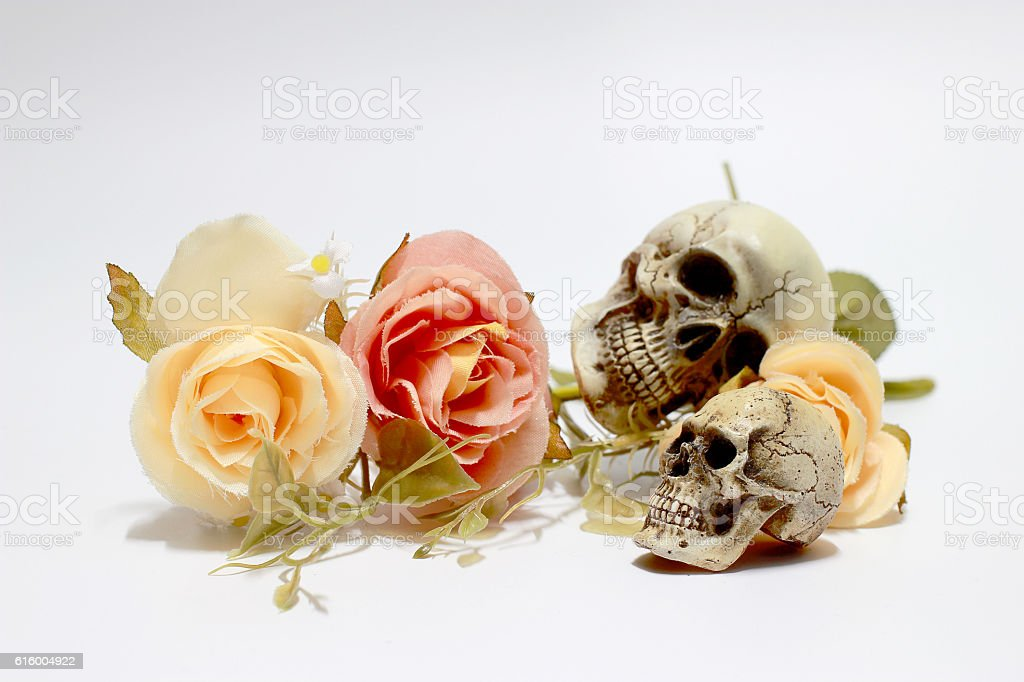 Bunch of flowers isolated on white background. stock photo