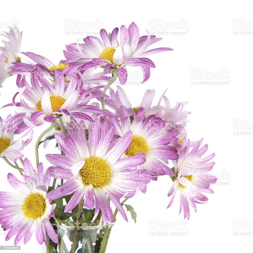 Bunch of  Flowers royalty-free stock photo